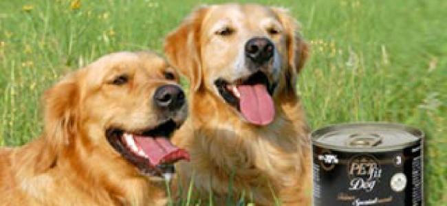 Neu bei uns: Pet-Fit – Artgerechte Hunde- & Katzennahrung